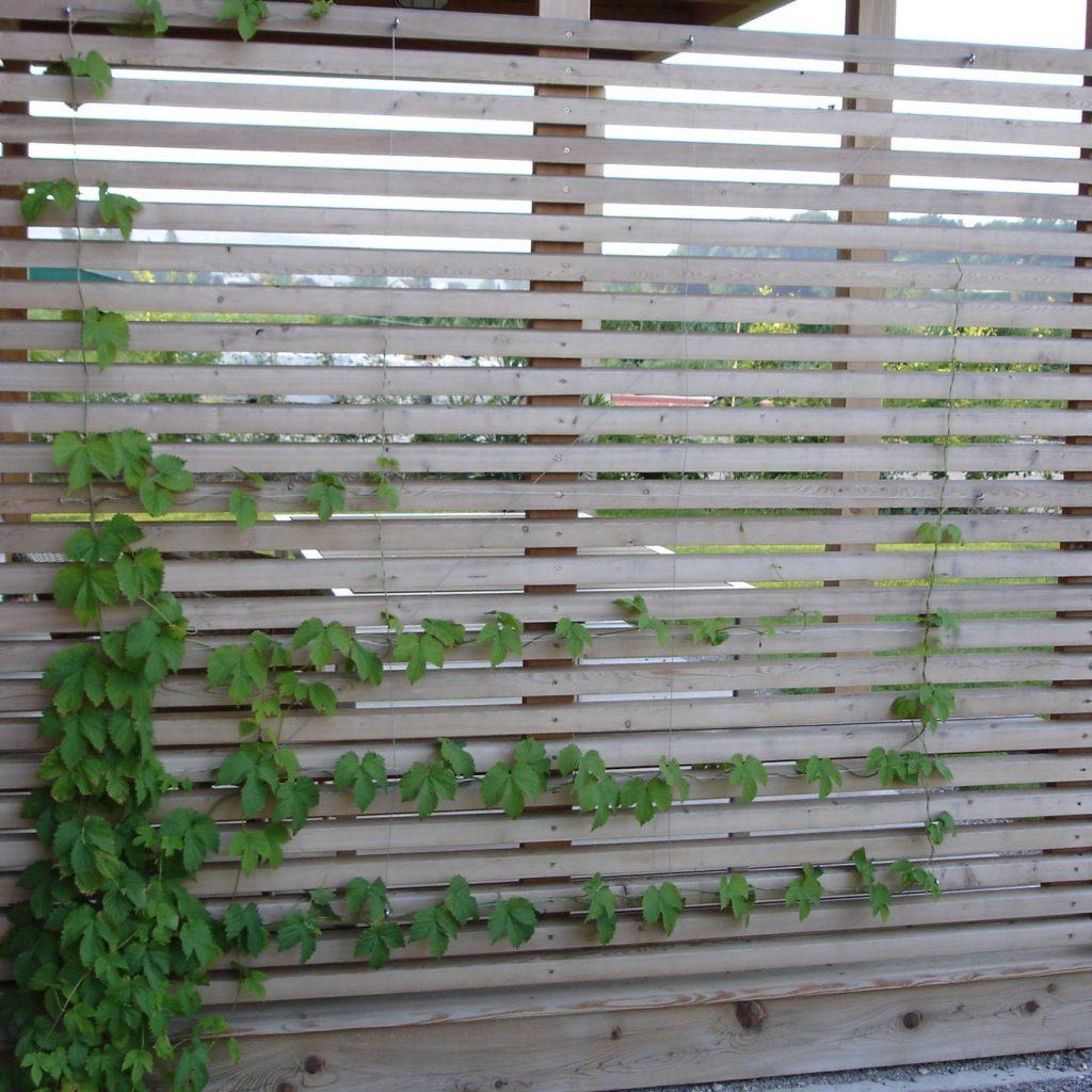 Garten Sichtschutz Lattenoptik