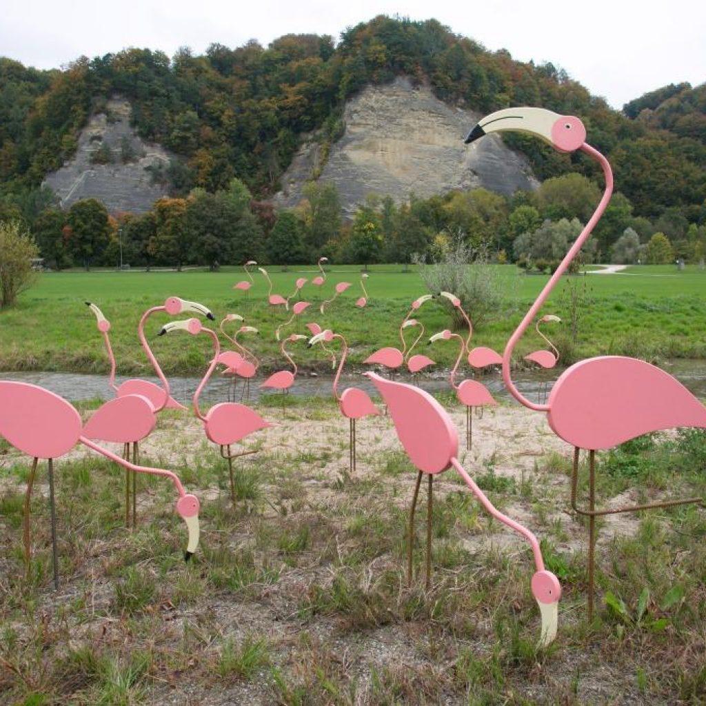Schützenmatt Flamingo