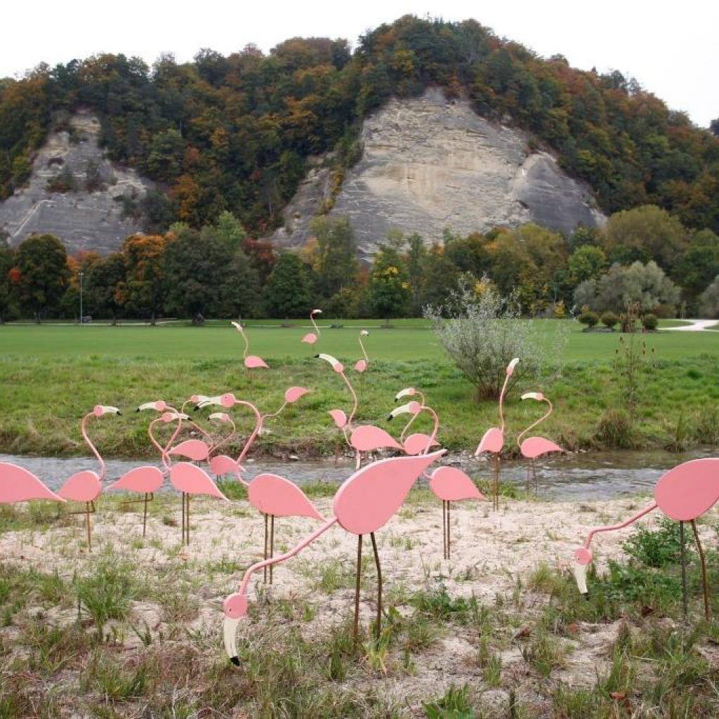 Flüeh und Flamingos