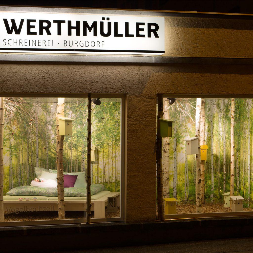 Schaufensterblick Birkenwald
